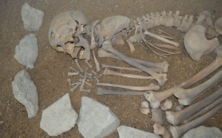 vykopávka - lidská kostra